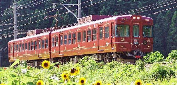 A local train on the Fujikyuko Line