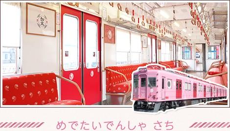 Medetai Train Sachi
